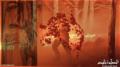 al sahwat times Australian bush firers 2020