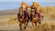 Al-Sahawat Times | Omani Horses | Oman Equestrian